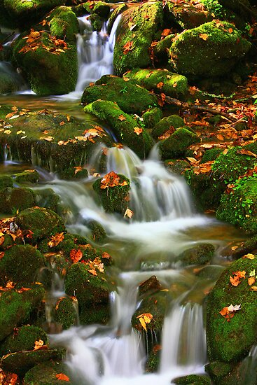 LAUGHING WATERS by Chuck Wickham