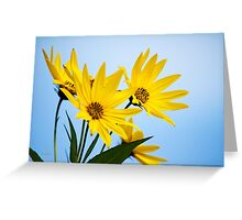 Meadow Sunflower Greeting Card