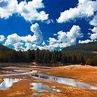 summer landscape by plamenx