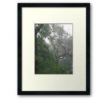 THROUGH TEARS OR RAIN, IT'S ALL THE SAME Framed Print