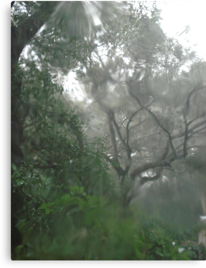 THROUGH TEARS OR RAIN, IT'S ALL THE SAME by May Lattanzio