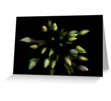 The Nature of Things - Continuum Greeting Card