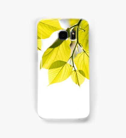 Twig with young green leaves Samsung Galaxy Case/Skin