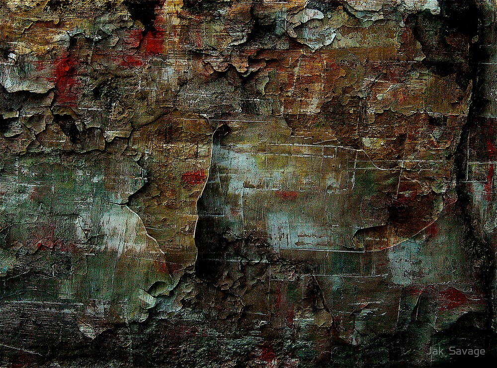 Beauty In The Cracks (1) by Jak  Savage