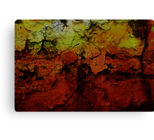 Beauty In The Cracks (2) Canvas Print