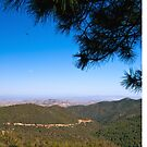 The Gila Wilderness in New Mexico by doorfrontphotos
