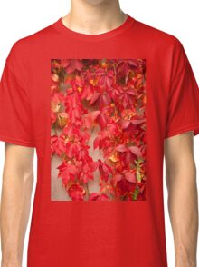 Vitaceae red ivy wall abstract Classic T-Shirt
