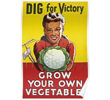 Dig for Victory - Grow your own vegetables Poster