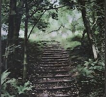 Stairway by Peter Ackers
