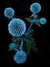 Blue Fractal Moons by Atılım GÜLŞEN