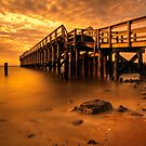 Delaware Bay Fishing Pier by Michael Mill