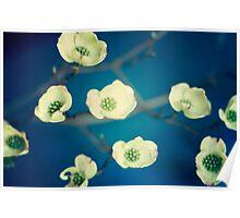 Vintage Spring Flowers Series 1 Poster