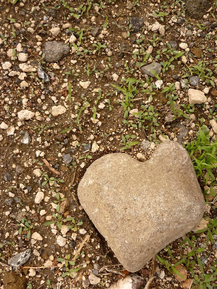 Stone Heart by freger