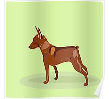 Hand drawn illustration of miniature pinscher. Poster