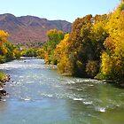 Animas River Durango, Colorado by ACBPhotos