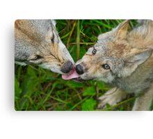 Tongue Lashing Canvas Print