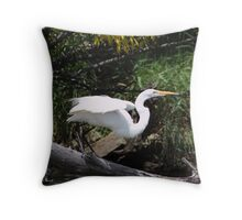 Launch Sequence Throw Pillow