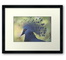 Unique Bird Framed Print