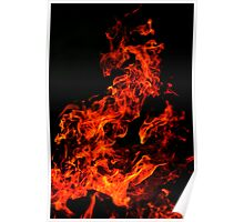 Phoenix in the flames Poster