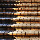 The Brick Steps by Eve Parry