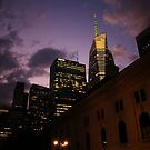 Sunset over Bryant Park by Vivienne Gucwa