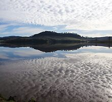 Craigbourne Reservoir today - our first day of sun !! by Ron Co