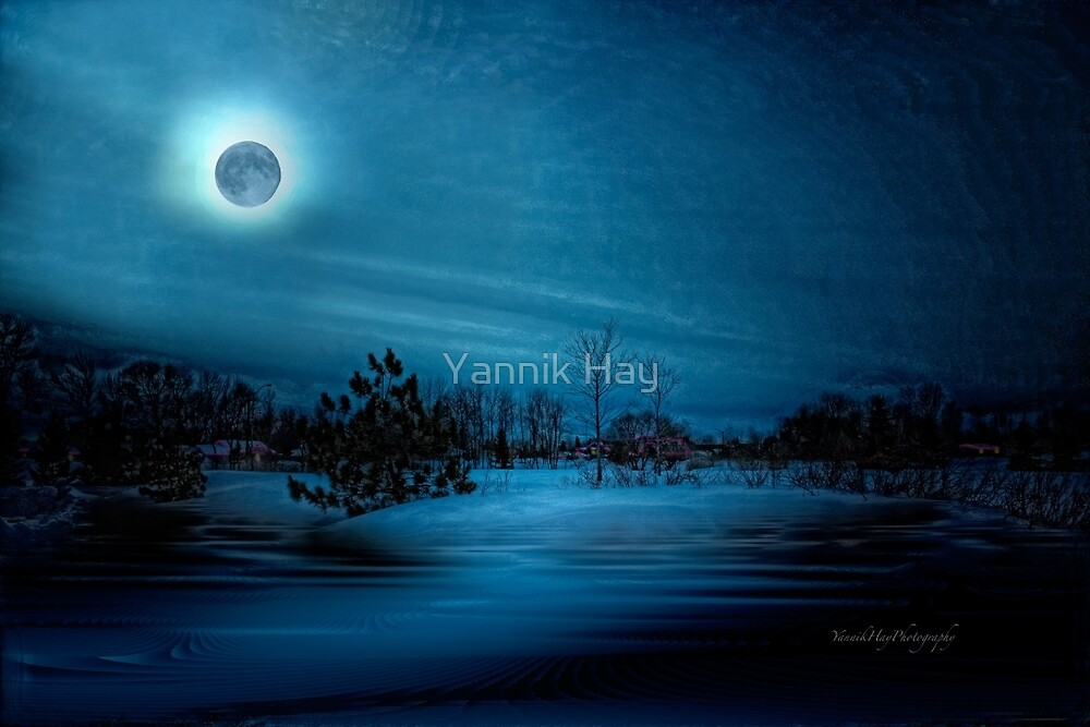 Moon Light Serenade by Yannik Hay