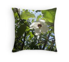 Hidcot Gardens, National Trust Property Throw Pillow