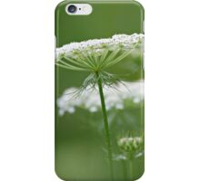 Flower Stack - Queen Anne's Lace iPhone Case/Skin