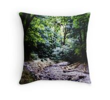 River Runs Dry #2 (low key) Throw Pillow