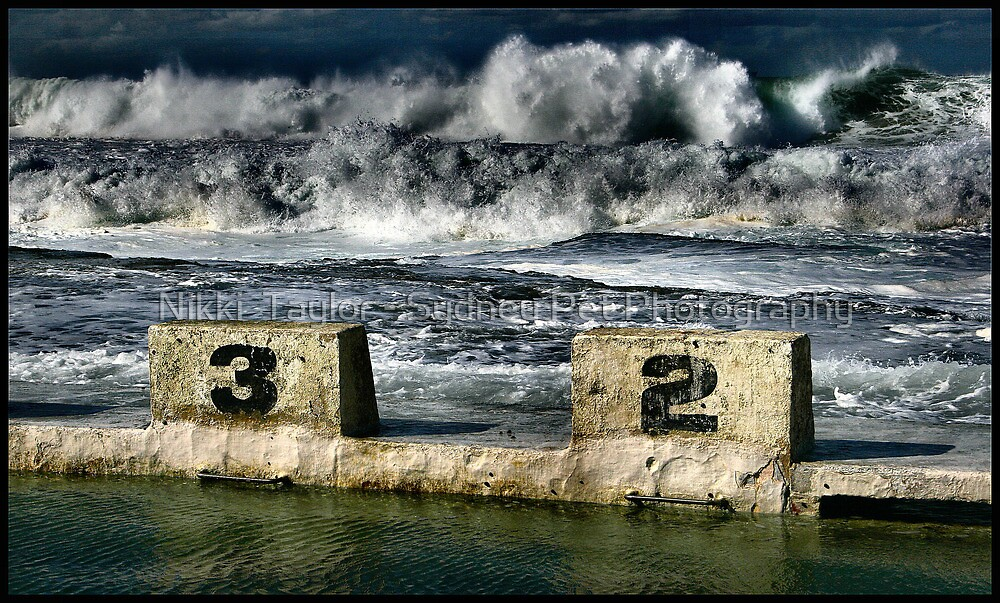 Merewether Baths by Nikki  Taylor - Sydney Pet Photography