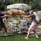 Pulled pork by Susan Littlefield
