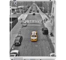 From the High Line iPad Case/Skin