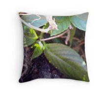 cobweb Throw Pillow