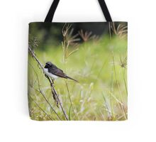 Little Willy Wagtail Tote Bag
