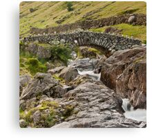 Lake district 4 Canvas Print