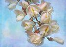 flowering by Teresa Pople
