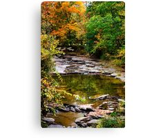 Fall Stream Landscape Canvas Print