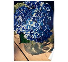 Periwinkle Hydrangea Blossom in vintage glassware. Poster