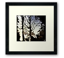 Water of Leith, Edinburgh Moonlight Drawing Framed Print