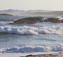 Wild Seas by pennyswork