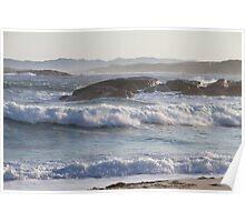 Wild Seas Poster