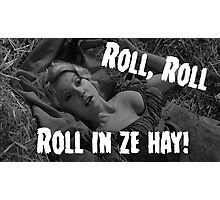 Roll in ze hay! Photographic Print