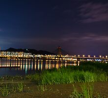 Seoul Bridge by brian hammonds
