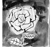 Some Say He Made The Flowers Photographic Print