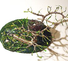 Bird Nest No.7 - Wall Art Sculpture by Sal Villano