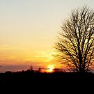 Indiana Sunset by petitejardim