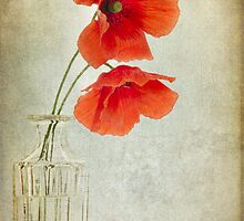 Two Poppies in a Glass Vase by Ann Garrett