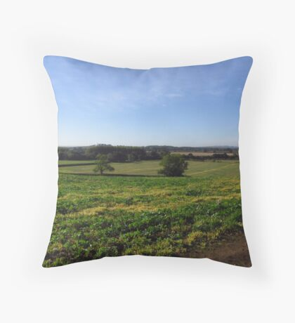English Landscape Throw Pillow