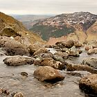 Lake District - stream by Bartosz Chajek